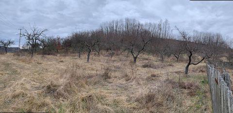 Romania property for sale in Milcoiu, Valcea County