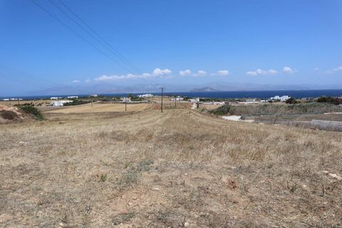 Excellent plot of land with huge development potential for sale in Cyclades Paros island Greece Euro Resales Property ID: 9826465 Property Location Ampelas,Paros Paros island Cyclades 84401 Greece Property Details The plot is located in Ambelas of Pa...