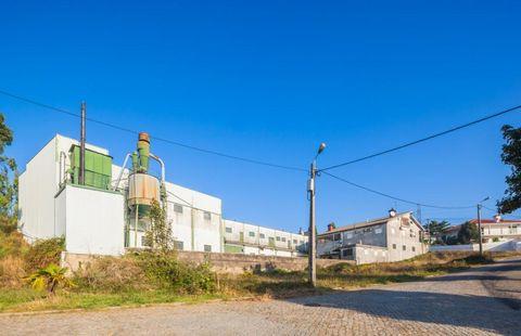 Pavilhão preparado para industria de móveis, com sector de fabrico, montagem e polimento, na zona Industrial de Rebordosa, Paredes. Destinado a qualquer tipo de industria, tem zona de escritórios, vestiários, WC´s, mas com necessidade de remodelação....