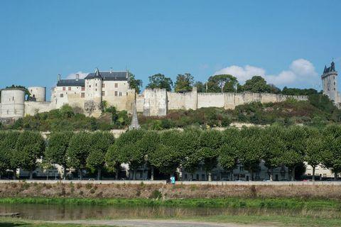 Quelle perle ! Cette maison de vacances unique et joliment rénovée est située dans le petit village de Beaumont-en-Véron, dans le département de l'Indre-et-Loire, un territoire riche de nature et de vignobles. L'intérieur est propre et moderne et com...