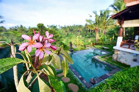 Superb 2 Bedroom Villa in Ubud Bali Indonesia Euroresales Property ID – 9824646 Property information: Villa for Lease in Ubud Spectacular modern take on traditional Javanese Joglo-style house with open floor plan and magnificent carved-wood doors, pi...