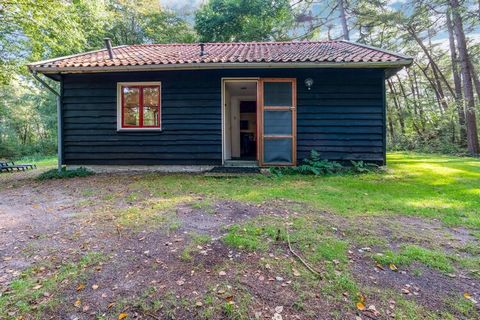 Hidden in the house's own private woods in Rheezerveen, this is a 2-bedroom holiday home for a small family or group of 4 persons. The holiday home has a furnished roofed terrace and a furnished garden to enjoy outdoor living. The immediate proximity...