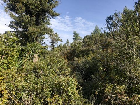 For sale a plot of 4160 sq. m. on beautiful Paxos island. It is situated in a peaceful area with countryside views. Electricity and water supplies are nearby and it builds up to 200 sq. m. It is a great opportunity to create a holiday home or for inv...