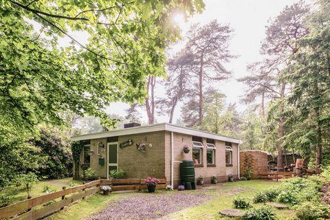 Op een bungalowpark bij Ommen in Overijssel, ligt deze vakantiewoning 'Bunderbos'. De bungalow is netjes ingericht en is een goede uitvalsbasis voor een heerlijk verblijf in Overijssel. De vakantiewoning ligt heerlijk beschut, aan de bosrand. Op een ...