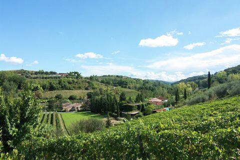 Gli appartamenti si trovano in una frazione del comune di Montaione e ti offrono la possibilità di trascorrere vacanze tranquille in un ambiente calmo e silenzioso. L'appartamento si trova nel cuore della Toscana, presso varie città d'arte, come Fire...