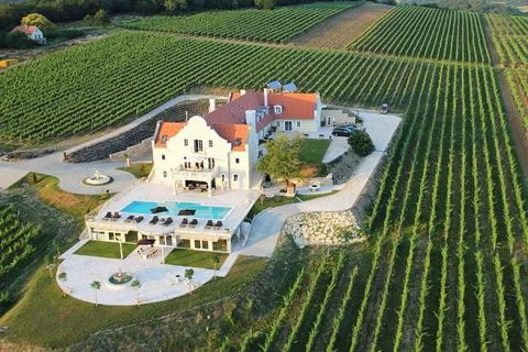 The winery comprises a vineyard of about 10 hectares, mainly producing red wine. The farm is a valued winner of the
