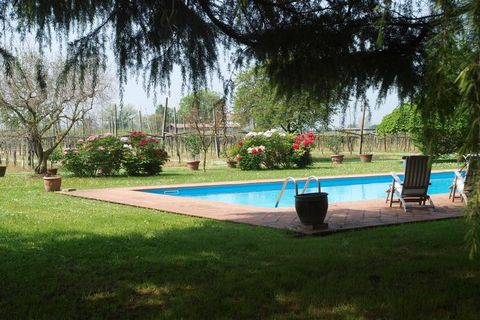 Seeped in luxury and comfort, this opulent holiday home in Faenza has 5 bedrooms and is the perfect oasis of peace and quiet for 9 people. It is ideal for many families on an unwinding vacation. A swimming pool, shared with owner cools you in the war...