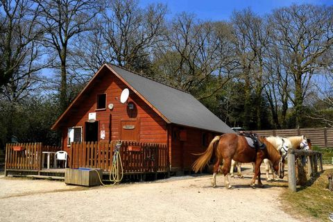 Typical Breton vacation home in the natural surroundings of Querrien. This location is ideal for (forest) walks and bike rides. In the garden with garden furniture, lounge chairs and BBQ you can enjoy the sun while reading a good book. All necessary ...