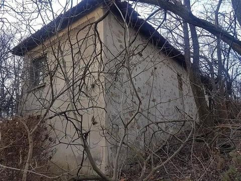 Stone house with a yard of 1500 sq.m in a village 15 km from the town of Lyubimets and 30 km from the Greek border. tel ... Check out our other suggestions on our ...